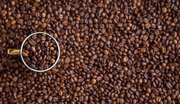 Μαθαίνοντας για τον Καφέ