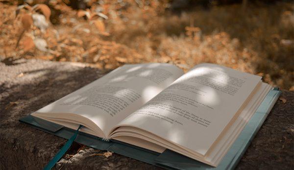 Βραχείες Λίστες Κρατικών Λογοτεχνικών Βραβείων 2020